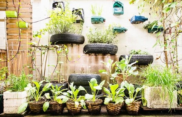 urban-garden